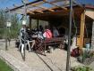 biking trip north black sea - Bulgaria - 63