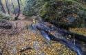 canyoning-rodope-bulgaria-15