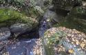 canyoning-rodope-bulgaria-18